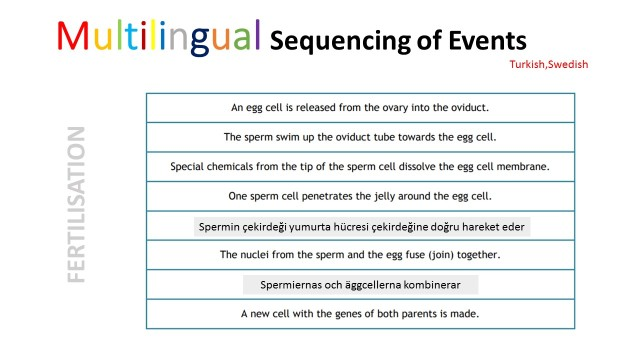 fertilisation sequencing